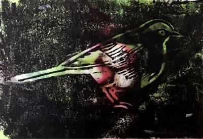 oiseau.lino