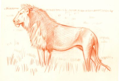 lion (trait)